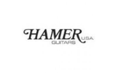 HAMER USA