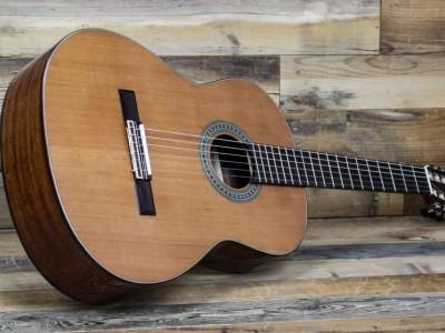 Акустические гитары ALVAREZ