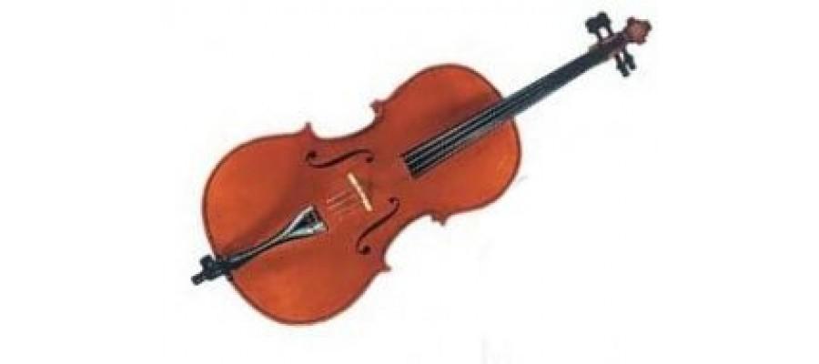 Виолончель GLIGA Cello 4/4 Gama II